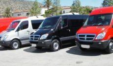 2014  Vans